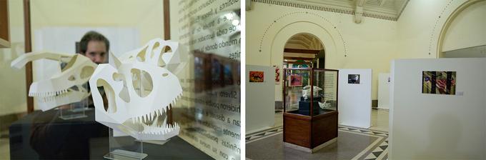 Muestra en el Museo Argentino de Ciencias Naturales Bernardino RivadaviaExhibition at the Museo Argentino de Ciencias Naturales Bernardino Rivadavia